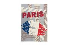 Dywan Arte Espina Joy 4203 Tricolore Paris 120x180cm nowoczesny design akryl
